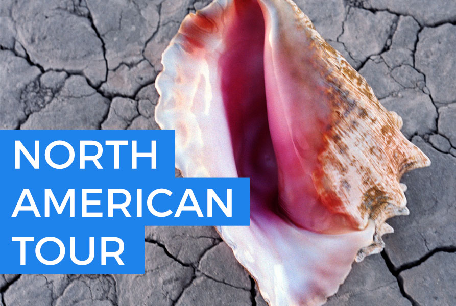 Annunciato il tour Nord Americano 2018