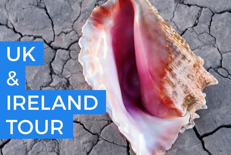 I Killers annunciano le date in UK e Irlanda a Novembre